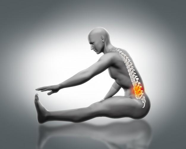 It promotes stronger bones.