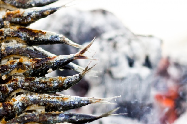 Sardines Manufacturers in the Philippines | Mega Global